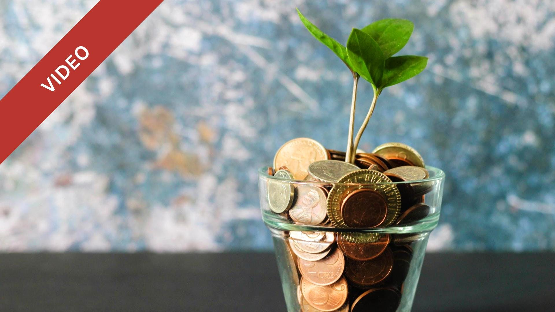 Preparing for Fundraising: How to Approach and Pitch for Your Seed Round