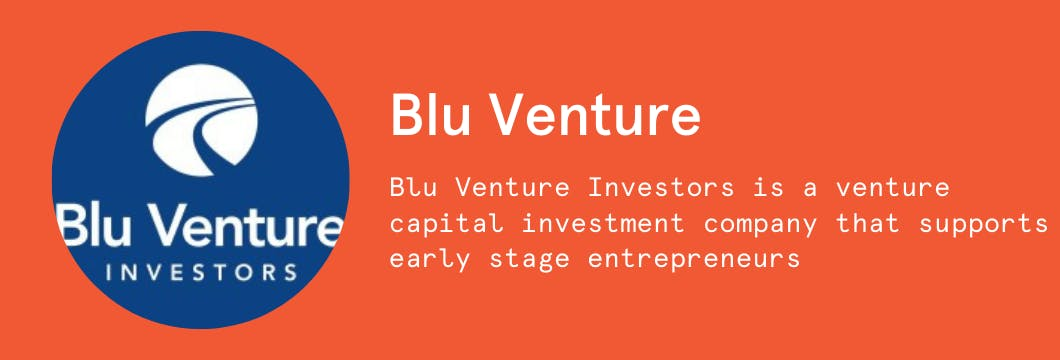 The 5 T's: A Blu Venture Investors Guide to Raising Early-Stage Capital